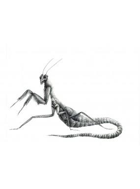 Sidorec - Il goblin chierico (e-book)